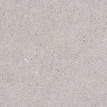 Fossil Gray